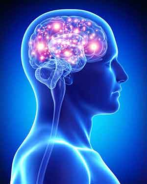 عصب شیمیایی مغز